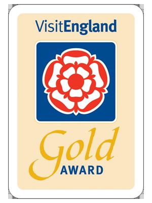 Gold-Award-V-E-copy